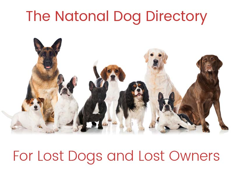 The National Dog Directory (Merchandise 1 year Free with Page)